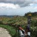 台風21号の爪痕と六甲山にボッコボコにされた話